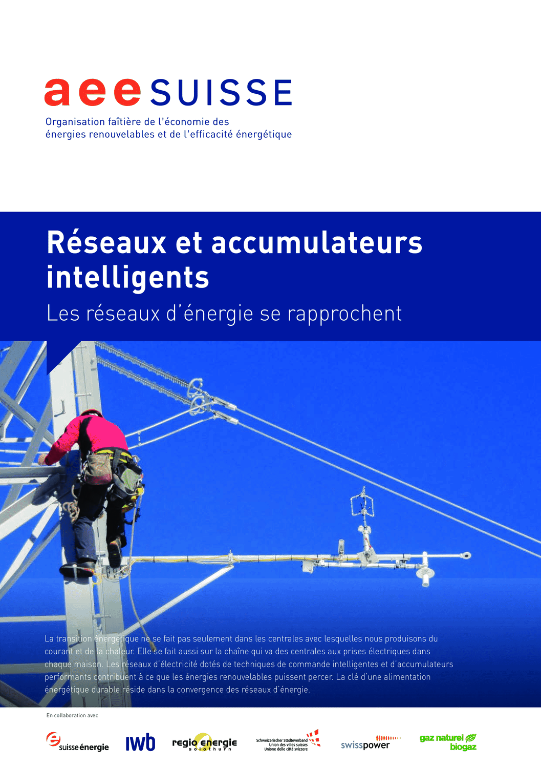 aee suisse Brochure Réseaux