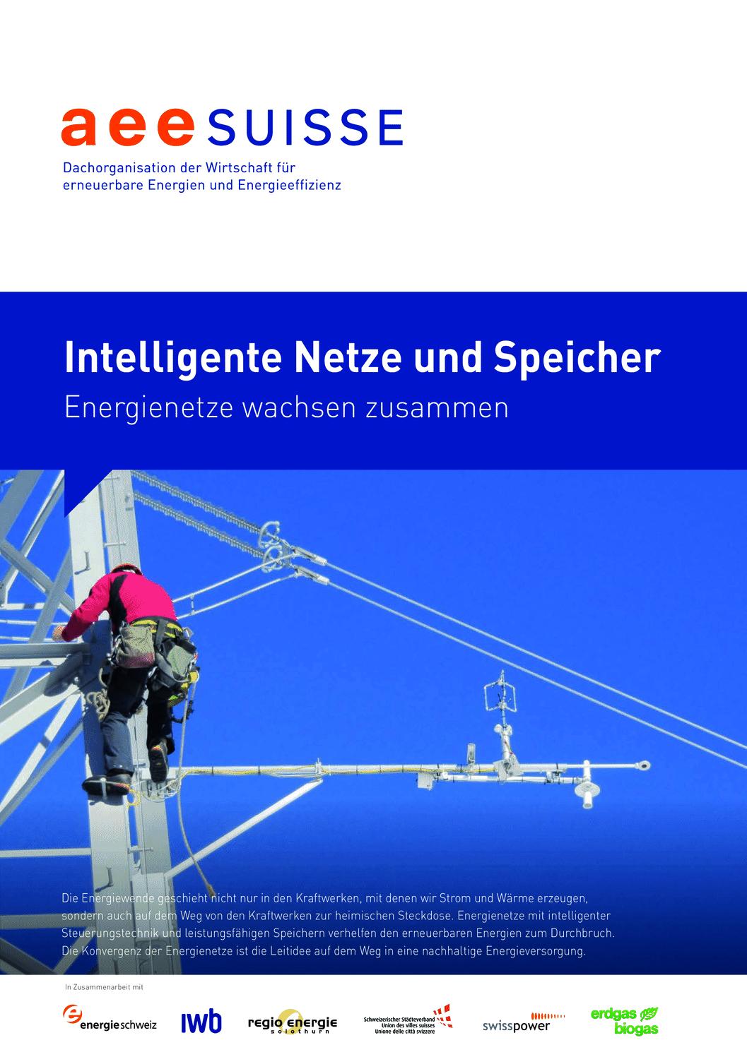 aee suisse Netze Und Speicher