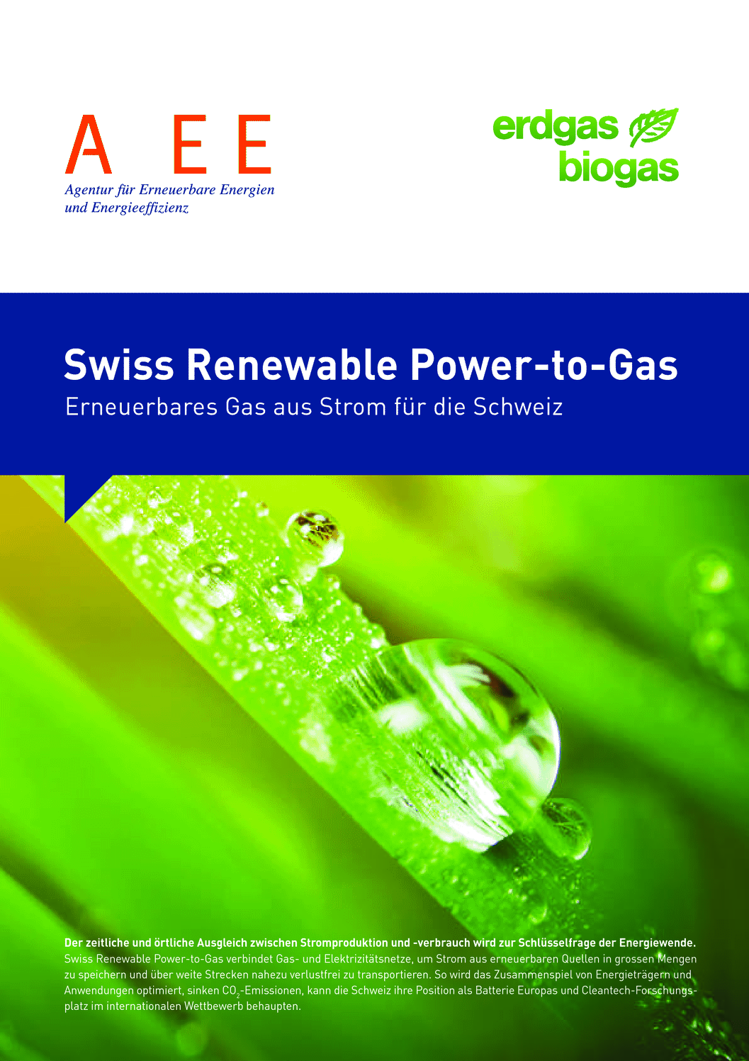aee suisse Swiss Renewable Power To Gas