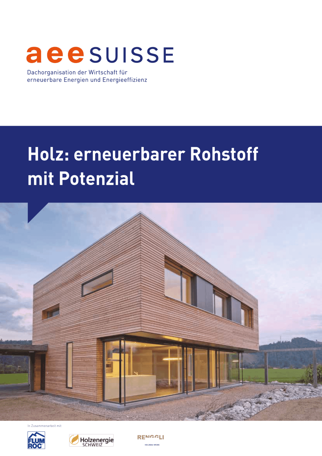 aee suisse Wald Holz Erneuerbarer Rohstoff